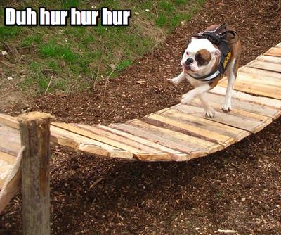 hurr-durr-bridge