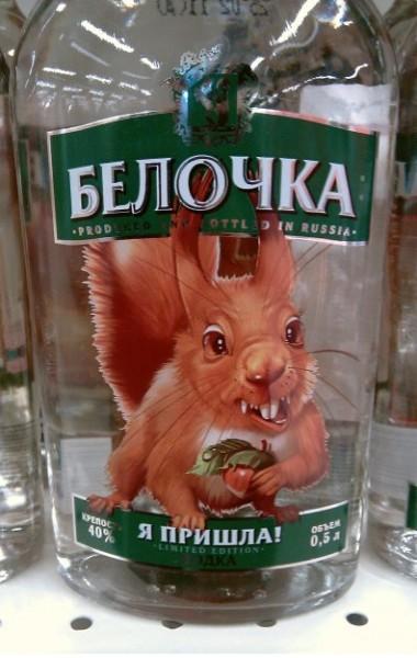 ecureuil bourré